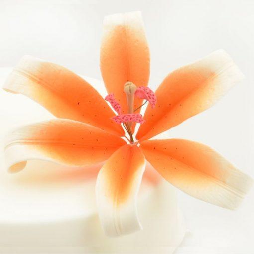 Nicoles Zuckerwerk Feinzucker Blüte Lily white orange spray