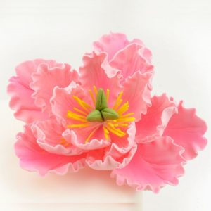 Nicoles Zuckerwerk Feinzucker Blüte Peony pink