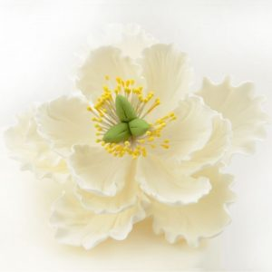 Nicoles Zuckerwerk Feinzucker Blüte Peony white