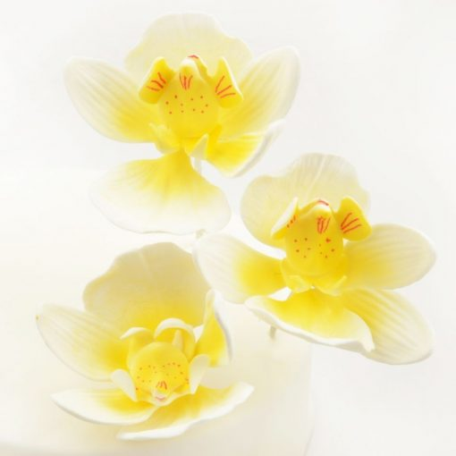 Nicoles Zuckerwerk Feinzucker Blüten Moth Orchid 3er