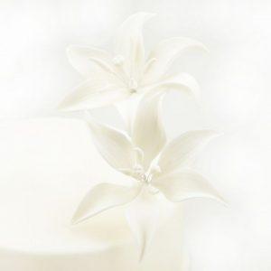 Nicoles Zuckerwerk Feinzucker Blüten Tiger Lily White 2er